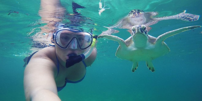 Swimmng with turtles
