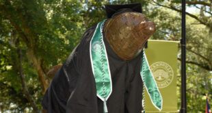 Bronze Dolphin Dressed for Graduation